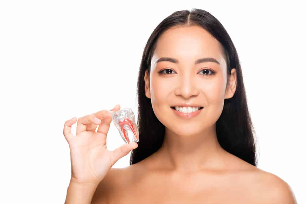 Woman holding plastic tooth - Brentwood Dental