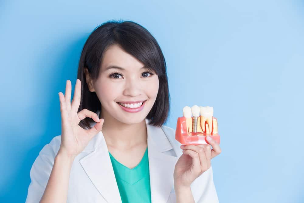 Dentist showing dental implant model - Brentwood Dental